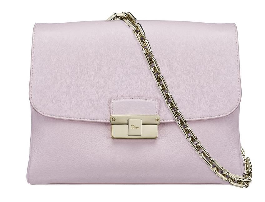 Diorling Bag by Dior