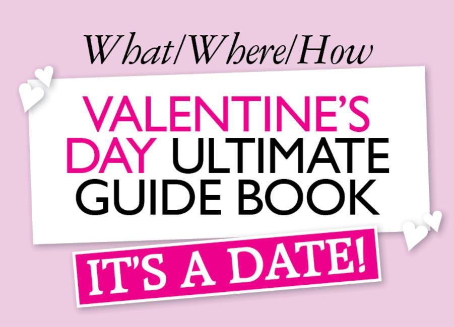 V-Day Guide Book