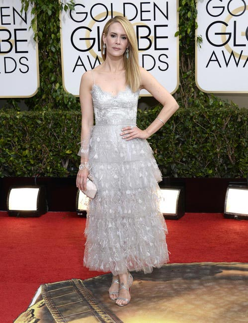 Sarah Paulson was all perfection in Marchesa at the 2014 Golden Globe Awards