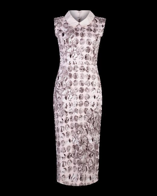 A printed pencil dress with a peter pan collar