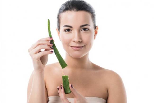 Aloe Vera Benefits Fights Aging