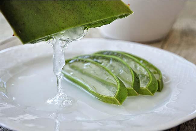 Aloe Vera Benefits Lightens Blemishes
