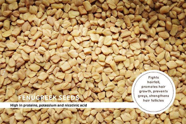 Fenugreek Seeds For Hair Fall Treatments