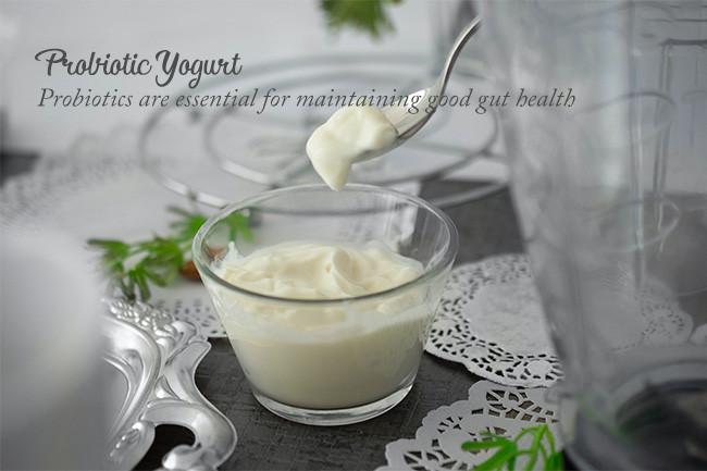 Foods To Increase Immunity Probiotic Yogurt