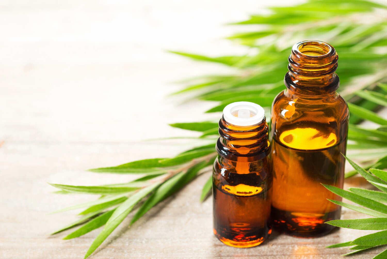 Best Oil For Hair Growth Tea Tree Oil