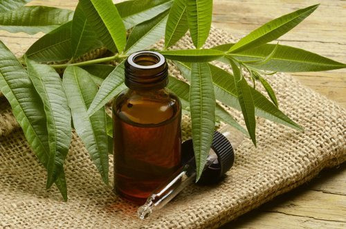Home Remedies For Acne Tea Tree Oil