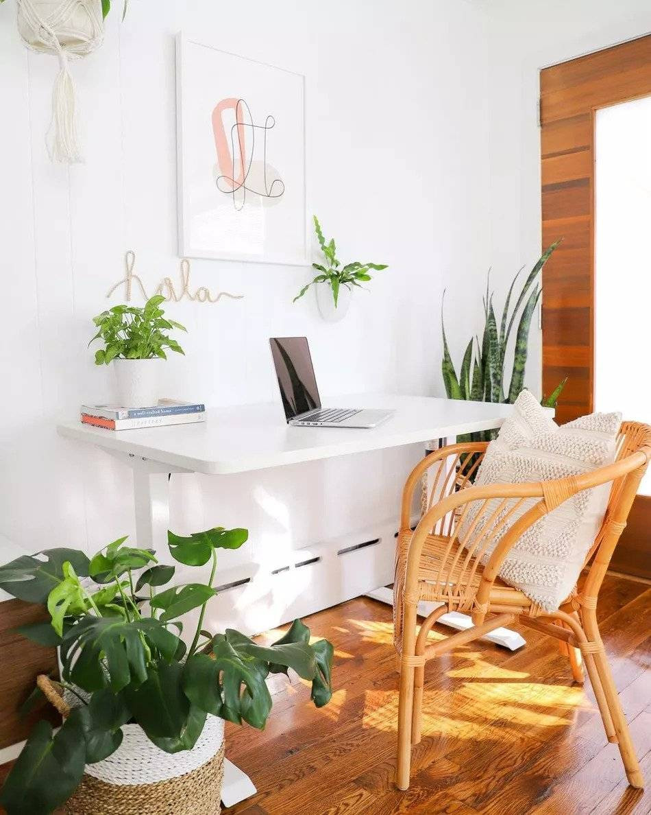 Bring in the 5 elements of feng shui