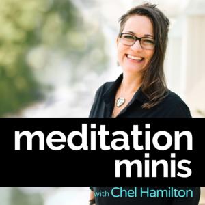 meditation mini